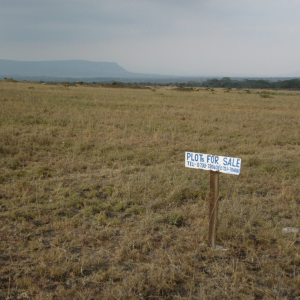 The plot of land Sunrise bought in 2008, thanks to kind donors